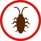 image of insect icon